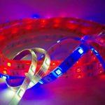 20mètres avec télécommande radio: Stripe Bande LED RVB professionnelle (M 30LED/m, IP65, 24V), contrôleur et bloc d'alimentation 3A de la marque LED Universum image 2 produit