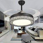 42 pouces Dimmable Ventilateur De Plafond Lumière À Distance Télécommande LED Lumière Acrylique Silencieux Rétractable Invisible Plafonnier de la marque Torero Relin image 1 produit