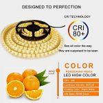 Bande Lumineuse LED,Ruban LED, Blanc Chaud,300LEDs,5M et Transformateur 12V 5A. de la marque LEDMO image 3 produit