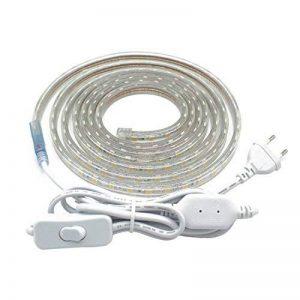 Bandeau LED avec Interrupteur, 220V Rubans à LED Ip65 Etanche Bande LED, SMD 5050 Ruban LED, 3 Mètre,Blanc Chaud de la marque LONCWO image 0 produit