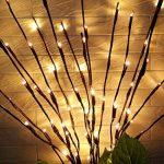 Bloomwin Eclairage spécial, 3pcs 1.2W 20LED 70CM Lumineux de Branche avec Batterie Guirlande lumineuse LED Arbre Décoration de Maison Murale Porte Noël Mariage Blanc Chaud de la marque Bloomwin image 4 produit