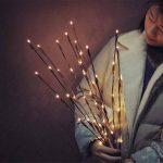 Branche Arbre Lumineux LED 77cm 20-LEDs Guirlandes Luminineuses Pour la Fleur Plante Artificielle Décoration Intérieure, Bureau, Chevet, Chambre, Maison - Blanc Chaud de la marque AZX image 2 produit