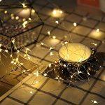 Diolumia - Guirlande Lumineuse LED à Piles avec Télécommande - 10M 100 Micro LED - Blanc chaud - Etanche IP 65 - Guirlande décorative pour Noël, Maison, Fêtes, Mariages, Anniversaire, Nouvel An de la marque Diolumia image 4 produit