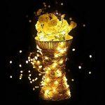 Diolumia - Lot de 2 Guirlandes Lumineuses à Piles 1M - 20 Micro LED - Blanc Chaud - Câble en cuivre - Guirlande LED piles pour Noël nouvel an mariage chambre balcon de la marque Diolumia image 2 produit