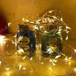Diolumia - Lot de 2 Guirlandes Lumineuses à Piles 1M - 20 Micro LED - Blanc Chaud - Câble en cuivre - Guirlande LED piles pour Noël nouvel an mariage chambre balcon de la marque Diolumia image 1 produit