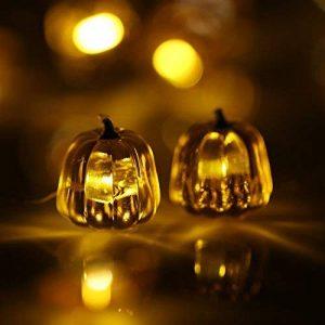 Docooler Halloween Guirlande Lumineuse 40 LEDs 3m / 10ft Fées LED Fonctionnant sur Batterie pour la Décoration Intérieur Pumpkin 2 de la marque Docooler image 0 produit
