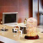 ELINKUME 16,4 pi (5 M) 50LEDs à piles étanche LED Guirlande lumières 2W 3V fil argenté Flexible guirlande lumineuse (5 M, blanc chaud 3000 K) de la marque ELINKUME image 3 produit