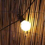 Festive Lights Guirlande Lumineuse Guinguette 24V Connectable 20 Ampoules Opaques à LED 8 Mètres Intérieur Extérieur Waterproof (Blanc Chaud) de la marque Festive Lights image 3 produit
