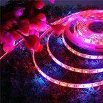 GLIME Ruban LED de Croissance 5m Etanche IP54 LED SMD 5050 300 LEDs 2 Modes ON/Auto Bande Lumière Tube Lumieux avec Adaptateur pour Plante Culture Fleur Fruit Légume Végétale de la marque GLIME image 4 produit
