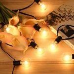 guirlande ampoule extérieur TOP 5 image 1 produit