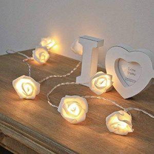 Guirlande Lumineuse 20 Roses Ivoire 20 LED Blanc Chaud 3,80 Mètres à Pile de la marque Festive Lights image 0 produit