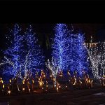Guirlande lumineuse, 216 LED 5 M LED cordes, Rideau lumineux, LED étoilées de la marque BUOCEANS image 3 produit