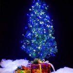 Guirlande Lumineuse de Deux Couleurs WISD 33M 600 LED sur Câble Vert avec 8 Modes de Fonction EU Prise Plug, Décoration Idéale Intérieure et Extérieure pour Noël, Sapin, Chambre, Jardin, Fêtes, Mariages - ( Bleu + Blanc ) de la marque WISD image 4 produit