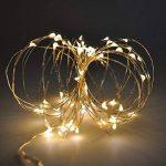 Guirlande Lumineuse Fil Cuivre LED Etanche a Pile Interieur et Exterieur Éclairage Doré 60 LED 6 Mètres avec 8 Modes Boitier de Batterie Décoration de Noël Mariage Anniversaire de Enuotek de la marque ENUOTEK image 1 produit