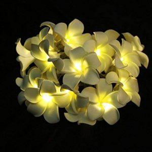 guirlande lumineuse fleur TOP 2 image 0 produit