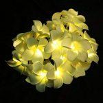 guirlande lumineuse fleur TOP 2 image 2 produit