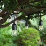 guirlande lumineuse noire TOP 4 image 3 produit