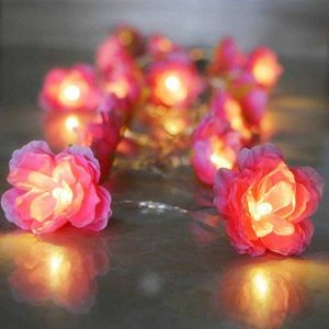 guirlande lumineuse roses blanches TOP 1 image 0 produit