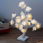 guirlande lumineuse roses blanches TOP 2 image 2 produit