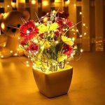Guirlandes Lumineuse Étanche Cuivre Fil 10M 100 LEDs Comme Etoilées Lumières LED pour Noël Mariage Décoration d'extérieur et intérieure Charger par USB de la marque HanLuckyStars image 1 produit