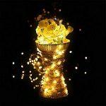 Guirlandes Lumineuse Étanche Cuivre Fil 10M 100 LEDs Comme Etoilées Lumières LED pour Noël Mariage Décoration d'extérieur et intérieure Charger par USB de la marque HanLuckyStars image 2 produit