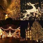 Guirlandes Lumineuses , 30M Etanche 300 LEDs avec 8 Modes de Fonctionnement Fée LED pour Mariage, Anniversaire, Sapin de Noël, Cour, Jardin, Décoration d'extérieur et intérieure de la marque HanLuckyStars image 3 produit