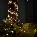 Guirlandes, Ryham 100 LED Rope 10M 32.8ft de mariage de Noël Lampe fil Lumières à piles long fil de cuivre pour la maison Chambre Arbre Partie, blanc chaud de la marque Ryham image 4 produit