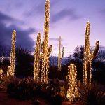 HJ® 30M 300LEDs Blanc Chaud LED Guirlande Lumineuse Décor Chambre Maison Jardin Terrasse Pelouse de la marque hejun image 4 produit