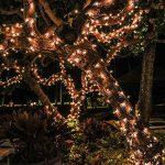 KINGSO LED Guirlande Lumineuse 16 Couleurs à Fil Cuivre Imperméable IP67 avec Télécommande 5M 50 LEDs Alimenté par Batterie Multicolore Chaîne RGB Dimmable Lumières Idéale pour Décoration Intérieure Extérieure Jardin Noël Anniversaire Parti Mariage Soirée image 2 produit