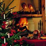 Konstsmide 2032-000 Guirlande de Sapin Bougie + 25 Lampes Claires + Prise Divisible 230 V de la marque Konstsmide image 2 produit