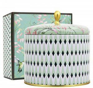 La Jolie Muse Bougie Parfumée 400g Bougie De Cire De Thé Blanc Naturelle 2 Grandes Mèches De Canette De 80Heures de la marque La Jolie Muse image 0 produit