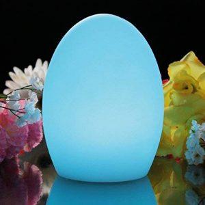Lampe Multicolore RGB - Oeuf Lumineux 19cm, Lumière Ambiance LED Rechargeable pour Déco Table, Veilleuse de PK Green de la marque PK Green image 0 produit
