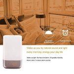 lampe naturelle TOP 10 image 2 produit