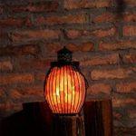 lampe naturelle TOP 11 image 3 produit
