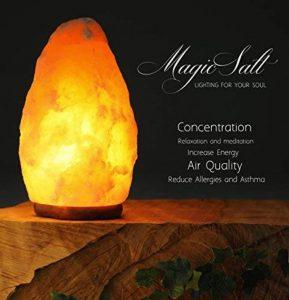 Lampe à sel himalayenne 2-3 kg de la marque MAGIC SALT LIGHTING FOR YOUR SOUL image 0 produit
