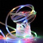 LE Lighting EVER Tube Lumineux Extérieur, LED RGBY USB, 10m 8 Modes, Etanche, avec Télécommande, pour Décoration Extérieure Intérieure Jardin Arbre Terrasse Pergola Tonnelle Balcon de la marque Lighting EVER image 4 produit