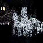 LE Lighting EVER Tube Lumineux LED, Guirlandes Extérieure, 12m Dimmable Blanc Froid, à Piles pour Décoration Mariage Jardin Parc Terrasse Arbre Pergola, etc. Lot de 2 de la marque Lighting EVER image 2 produit