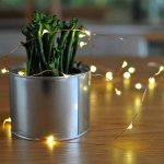 Led guirlandes de lumières 100 leds fées décoratives à piles, lumière de fil de cuivre pour chambre à coucher, mariage (33ft / 10m blanc chaud) de la marque Makion image 4 produit