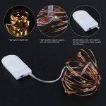 LEDMOMO 8 Unités Guirlande Lumineuse LED 6.6ft/2M Avec 20 micro LED par 2 x CR2032 (Compris) Blanc chaud de la marque LEDMOMO image 3 produit