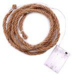 LEDMOMO LED Corde de chanvre Vintage fée guirlandes à piles pour Garden Party Lampe de lumière extérieure intérieure (blanc chaud) 2M de la marque LEDMOMO image 4 produit