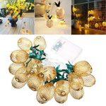 LEDMOMO Lumière en forme d'ananas en forme de cordon, alimentée par batterie 10 LED Éclairage de fête pour la fête de mariage à domicile Décoration d'anniversaire (blanc chaud) de la marque LEDMOMO image 3 produit