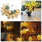 LEDMOMO Lumière en forme d'ananas en forme de cordon, alimentée par batterie 10 LED Éclairage de fête pour la fête de mariage à domicile Décoration d'anniversaire (blanc chaud) de la marque LEDMOMO image 4 produit