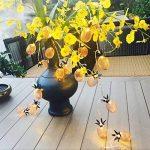 LEDMOMO Lumière en forme d'ananas en forme de cordon, alimentée par batterie 10 LED Éclairage de fête pour la fête de mariage à domicile Décoration d'anniversaire (blanc chaud) de la marque LEDMOMO image 2 produit