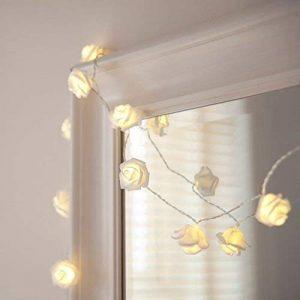 Lights4fun Guirlande Lumineuse 20 Fleurs Blanches à LED Blanc Chaud à Piles de la marque Lights4fun image 0 produit