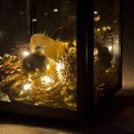 Lights4fun Lot de 10 x Guirlandes Lumineuses à Piles avec 10 LED Blanc Chaud de de la marque Lights4fun image 4 produit