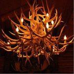 Lot de 12 4W E14 Ampoule de Filament LED Flamme Bougie 2700K Blanche Chaude Equivalent Ampoules Incandescente Halogène 40W Non-Dimmable de la marque THINKMORE image 4 produit