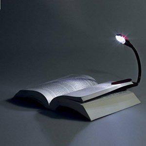 Mini lampe liseuse LED plastique 2 ampoules de la marque Carpentras image 0 produit