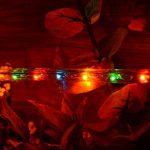 Nipach Tube lumineux pour décoration de Noël 20 m de la marque Nipach GmbH image 1 produit
