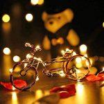 Qedertek 2M 20 LED Guirlande Lumineuse Lot de 12 Blanc Chaud en Fil Cuivre pour la Décoration de Chambre/Soirées/ Costume/Pâques (Piles Inclus) de la marque Qedertek image 4 produit