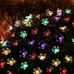 Qedertek Guirlande Solaire 7m 50 Fleur LED Multicolore Guirlande Lumineuse Extérieure avec 8 Modes d'éclairage Ornement de Jardin, Terrasse, Balcon de la marque Qedertek image 2 produit